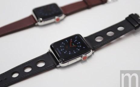 batch IMG 0978 resize 1 Apple Watch市場需求讓蘋果智慧穿戴部門市值擠入財富300強