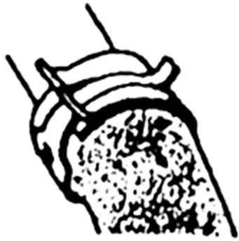 Соединительные шланги системы охлаждения и стягивающие