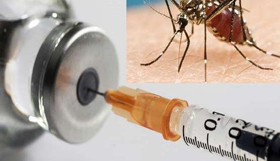 ملیریاویکسین