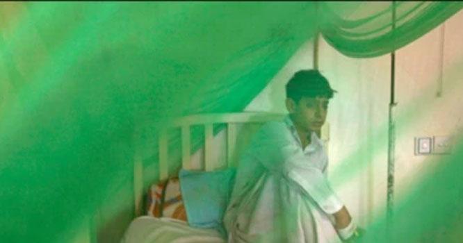 Dengue cases increase