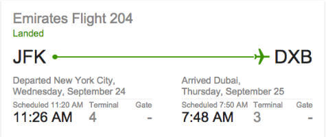 google now flight status