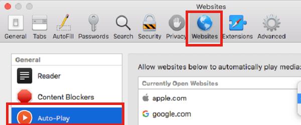 Website settings Safari for stop auto play videos