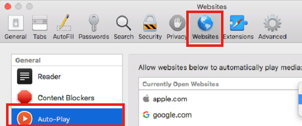Website settings Safari for stop auto play videos