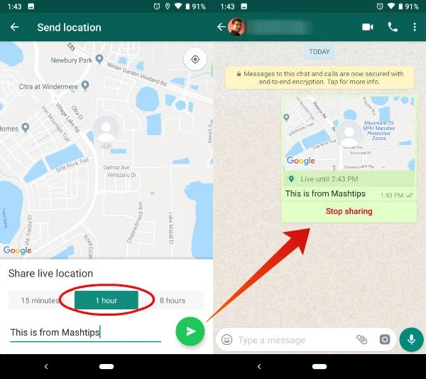 How to Share Live Location on WhatsApp? | Mashtips