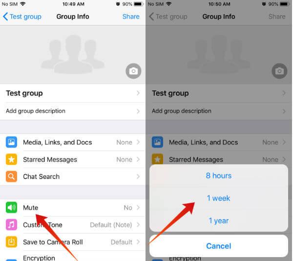 iphone whatsapp mute notifications