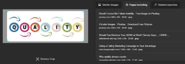 bing reverse image search results pc