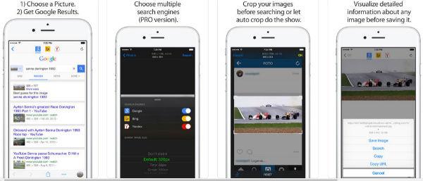 iPhone Reversee app