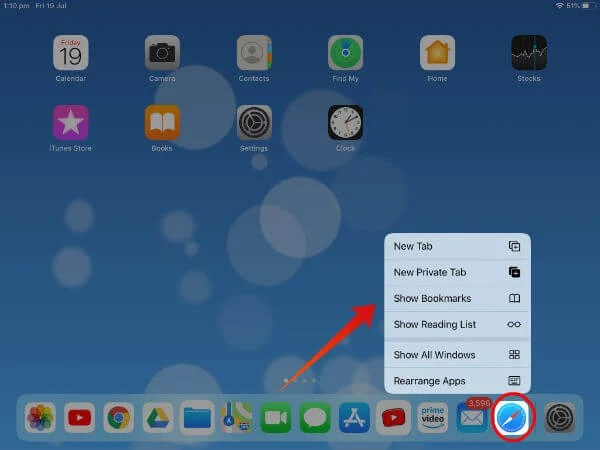 iPad App expose