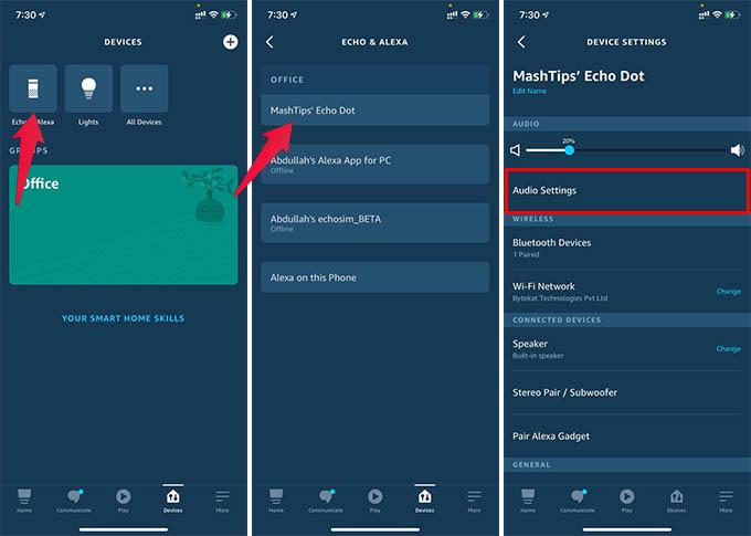 Audio Settings on Alexa App for Amazon Echo Dot