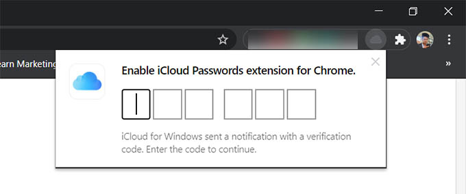 iCloud Passwords Extension Enter Code