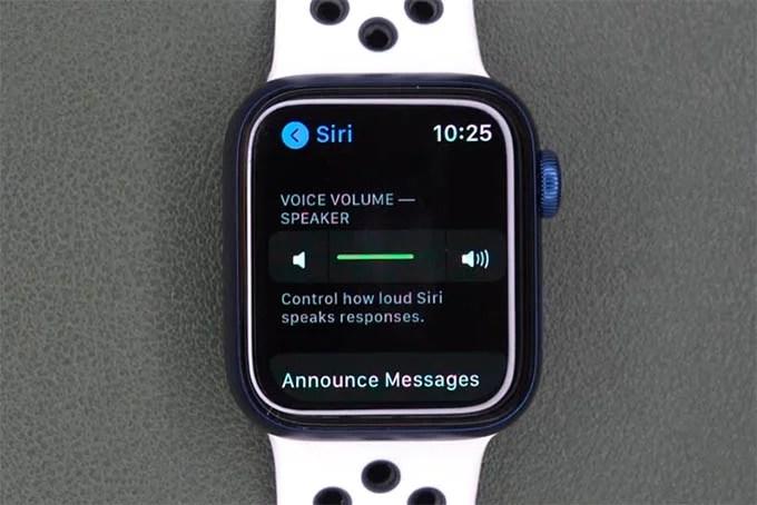 Reduce Siri Volume on Apple Watch