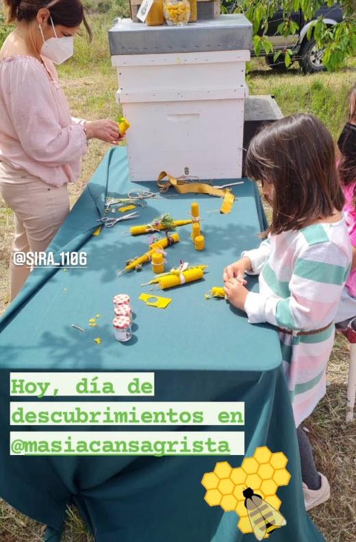 Taller-familiar-apicultura-Masiacansagrista