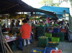 24 Mercado de agricultores de Turrialba