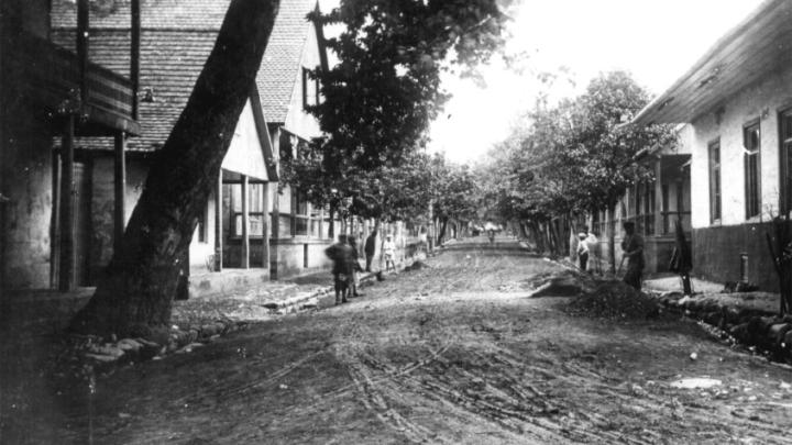 Azərbaycan almanları: Helenendorf bu gün (Göygöl)