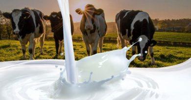 Competitividad láctea: herramientas para reactivar el mercado
