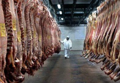 Las exportaciones de carne vacuna  argentina crecieron 78% en 2018