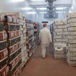 El volumen de las exportaciones de alimentos creció 15% durante el primer semestre
