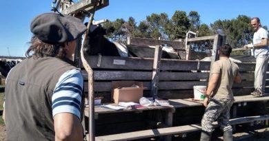 Realizan controles en el proceso de recertificación de establecimientos libres de tuberculosis