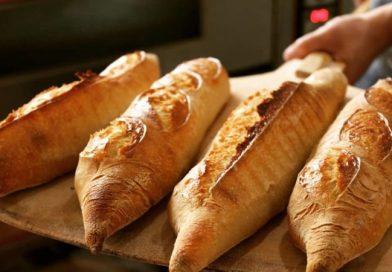 """Pan de masa madre, """"el pan de verdad"""""""