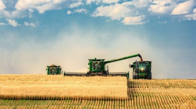 Agro pampeano: cepo al dólar y recuperación del sector