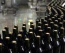 Buscan impulsar la sustentabilidad dentro de la industria vitivinícola argentina