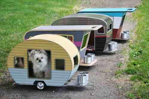 hewan peliharaan, kandang hewan, tempat makan hewan, anak kucing, anak anjing