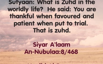 Patience and Gratitude In The Dunyah