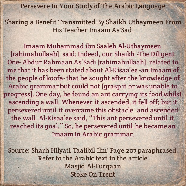 An Encouragement: Remember That Ant and Al-Kisaa'ee Whenever We Find Something Difficult During Arabic Lessons