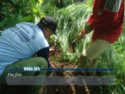 Bina Lingkungan dan Menanam Tanaman Konservasi Sempadan Sungai Serayu desa Pegalongan Patikraja Kabupaten Banyumas (14)