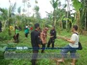 Bina Lingkungan dan Menanam Tanaman Konservasi Sempadan Sungai Serayu desa Pegalongan Patikraja Kabupaten Banyumas (16)