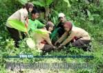 Bina Lingkungan dan Menanam Tanaman Konservasi Sempadan Sungai Serayu desa Pegalongan Patikraja Kabupaten Banyumas (6)