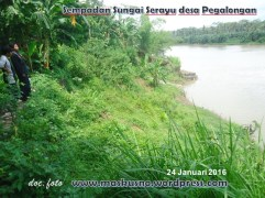 sempadan sungai serayu desa Pegalongan (1)