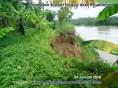 sempadan sungai serayu desa Pegalongan (3)