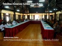 Pelatihan Pengenalan Konservasi Hutan dan Lahan Melalui Agroforestri (1)