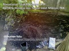 Pemanfaatan Tanah Pekarangan(PTP) Program PKK (4)