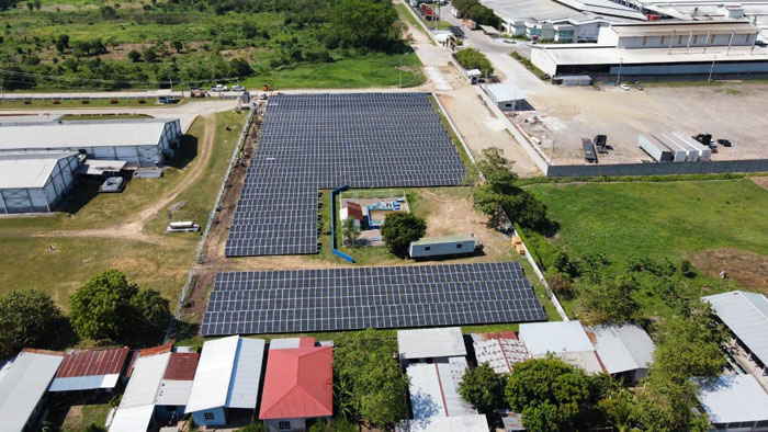 Solar energy gets a foothold in Latin American poultry