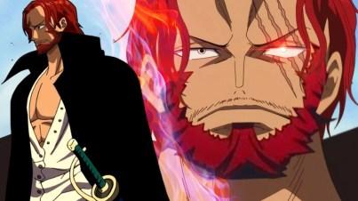 Dia adalah seorang kapten bajak laut yang diberi nama Red Hair.