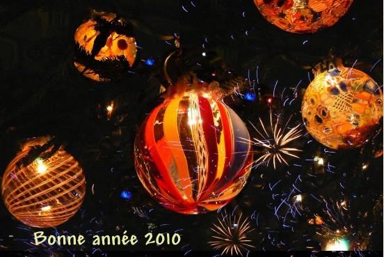 bonne-annee-2010.1262023504.jpg
