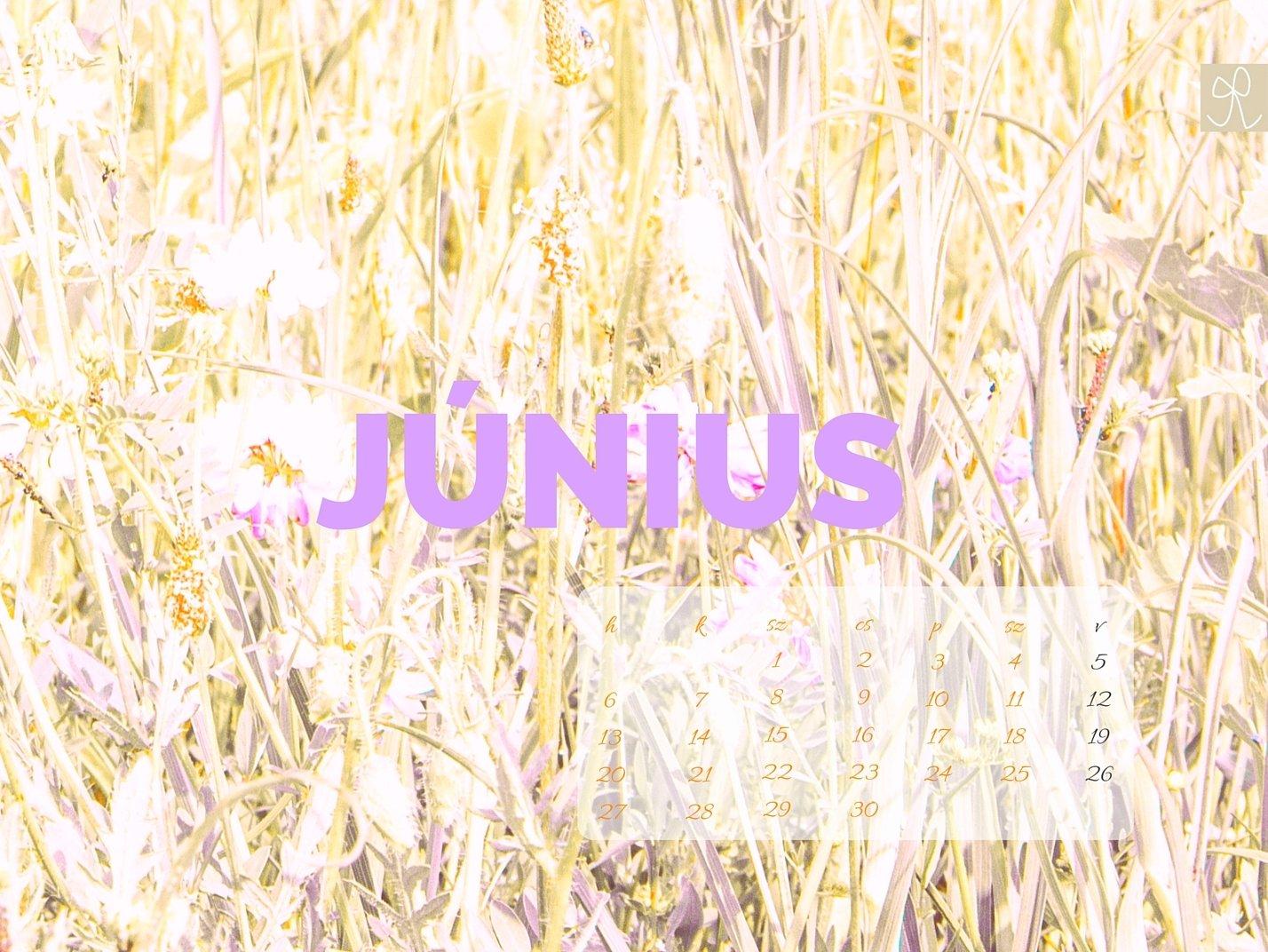 junius(4)