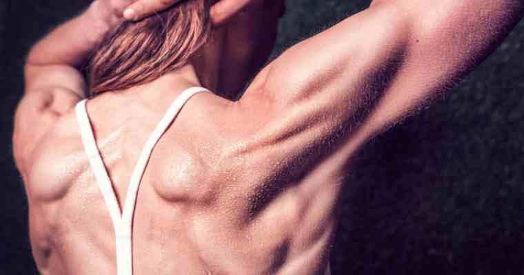 7 Exercises to Fix Shoulder Pain and Build Better Shoulders