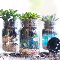 Summer Succulent Mason Jar Planters