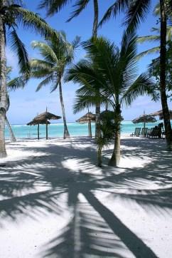 Diani-Beach-Diani-Beach-Kenya