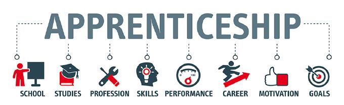 Apprenticeship Graphic