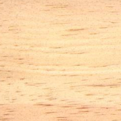 Ponderosa Pine Image