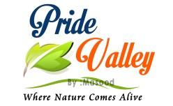 06-Pride Valley Logo