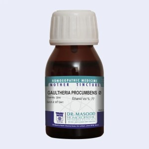 GAULTHERIA PROCUMBENS--Q-Mother tincture-dr.masood homeopathic pharma-Pakistan