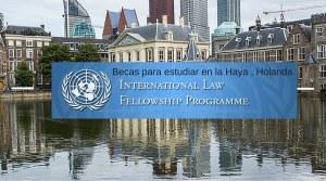 Holanda, UN, International Law
