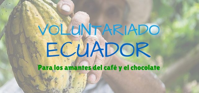 Voluntariado en Ecuador en diferentes áreas. Incluye hospedaje y alimentación