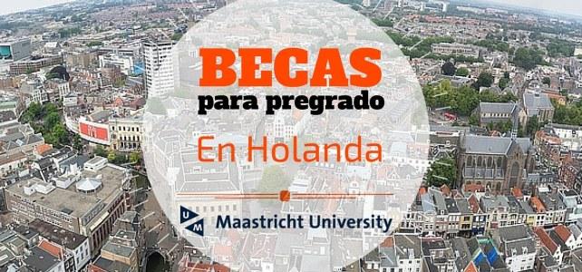 Becas de pregrado en Economía y Negocios en Holanda
