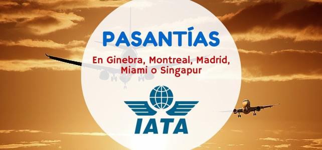 Pasantías profesionales con la IATA